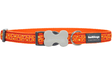 Red Dingo Dog Collar Bedrock Orange DC-BE-OR