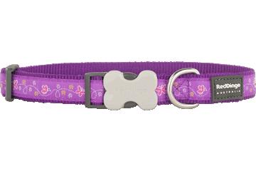 Red Dingo Dog Collar Butterfly Purple DC-BL-PU