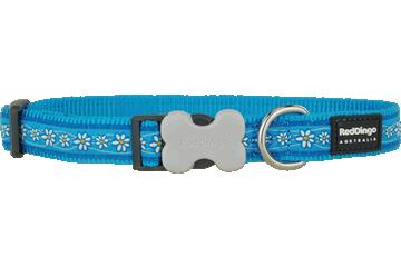 Red Dingo Dog Collar Daisy Chain Turquoise DC-DC-TQ