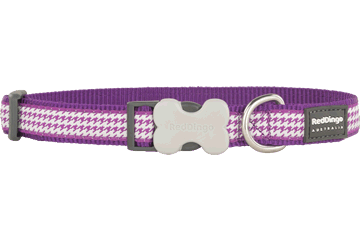 Red Dingo Dog Collar Fang It Purple DC-FG-PU