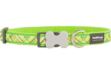 Red Dingo Dog Collar Flanno Lime Green DC-FN-LG
