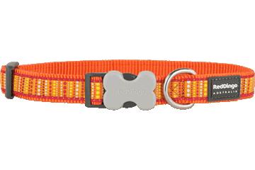 Red Dingo Dog Collar Lotzadotz Orange DC-LD-OR